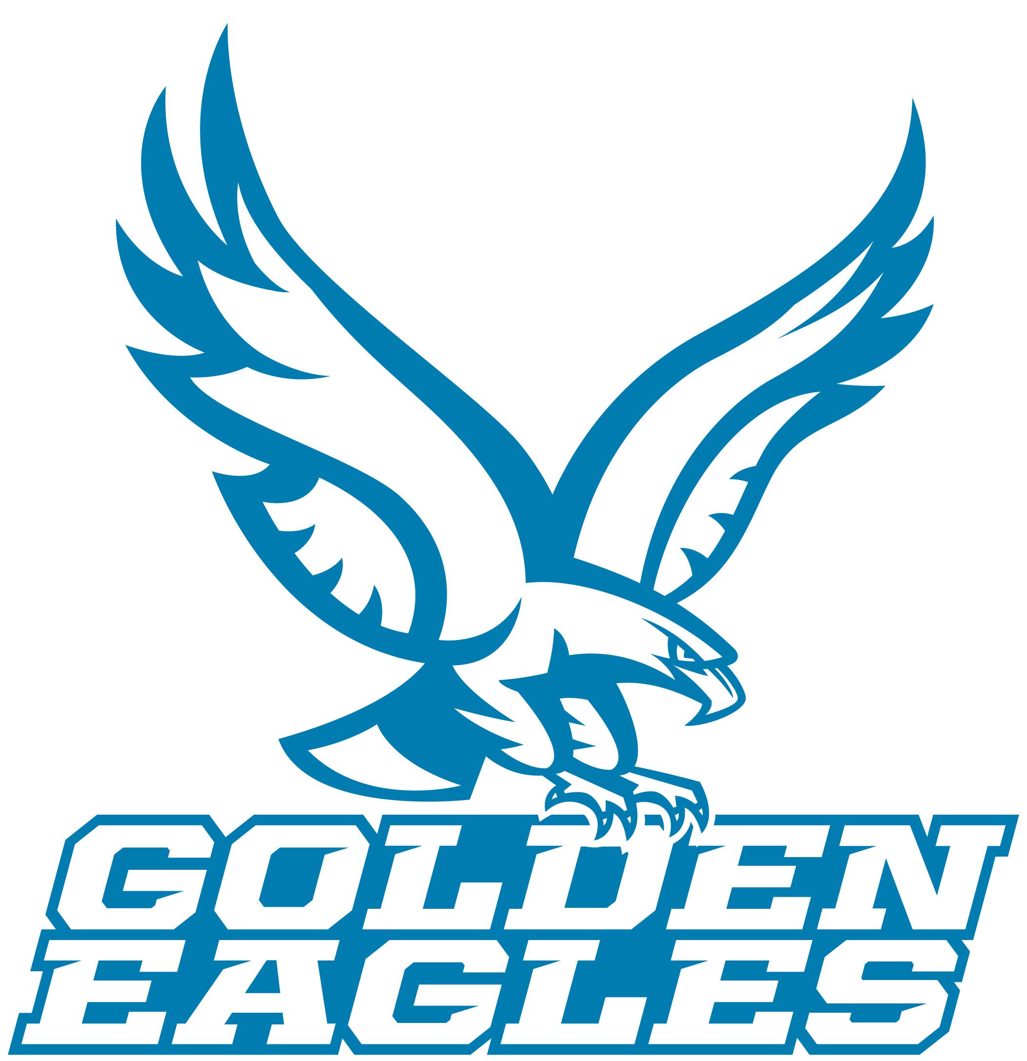 athletic logos about us holy family catholic schools