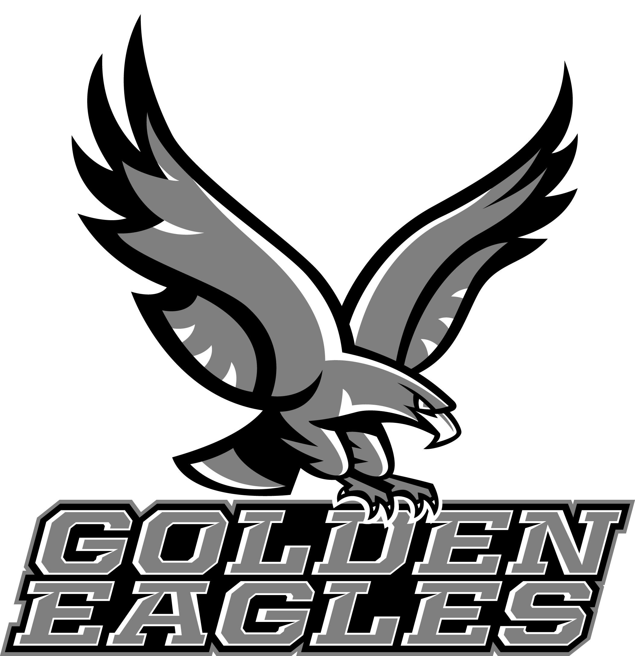 Mission Eagles Logo Color